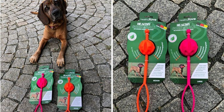 Healthy Toys: Gesundes Hunde-Spielzeug made in Kolbermoor